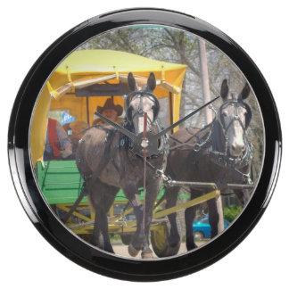 mule day parade fish tank clocks