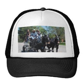 mule day parade in trucker hat