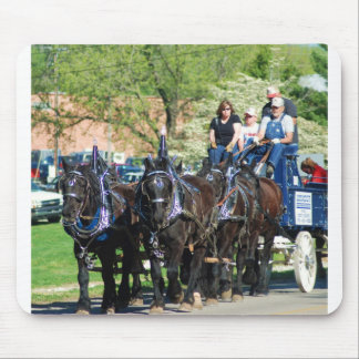 mule day parade mousepads