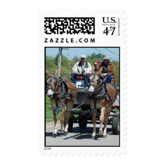 mule day parade postage