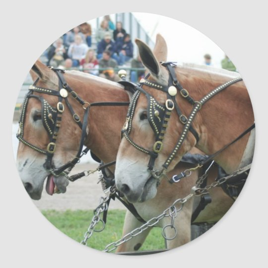 mule days classic round sticker