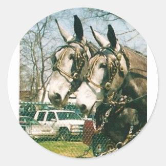 mule days classic round sticker