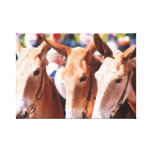 mule days in columbia tn gallery wrap canvas