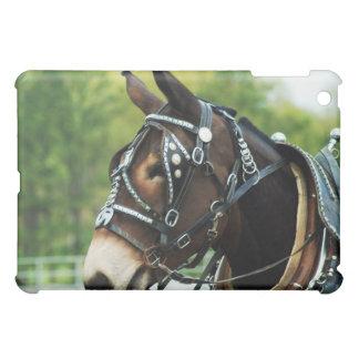 mule days iPad mini cases