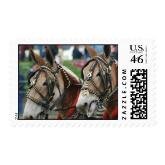 Mule days postage