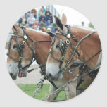 mule days round stickers