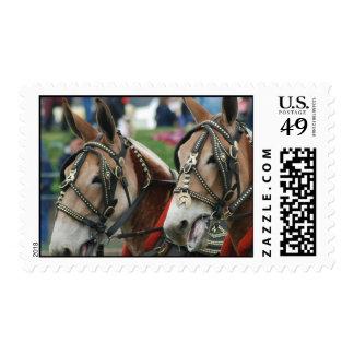 Mule days stamp