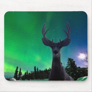 Mule deer and Aurora borealis Mouse Pad