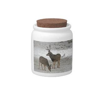 Mule deer buck and doe candy dish