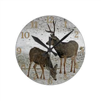 Mule deer buck and doe round clock
