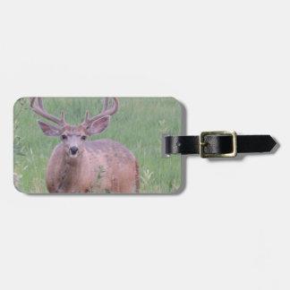 Mule Deer Buck Bag Tag