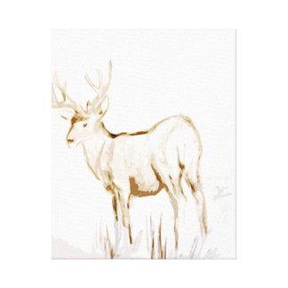 Mule Deer Buck Canvas Print