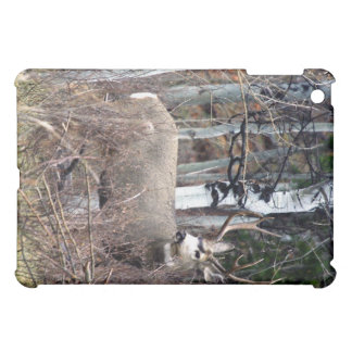 Mule deer buck in aspens iPad mini cases