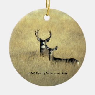 Mule Deer Ceramic Ornament