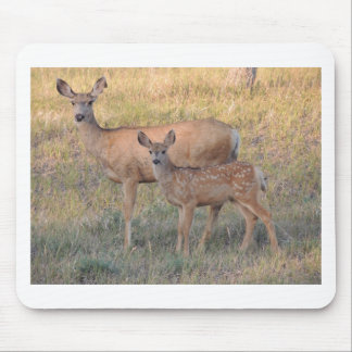 Mule Deer Doe and Fawn Mouse Pad