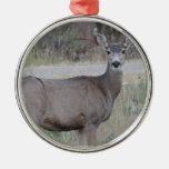 Mule Deer Doe Christmas Ornament