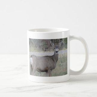 Mule Deer Doe Coffee Mug