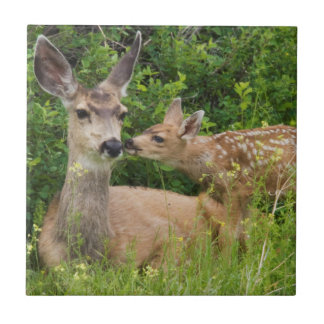Mule Deer Doe with Fawn 2 Ceramic Tile