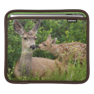 Mule Deer Doe with Fawn 2 Sleeve For iPads