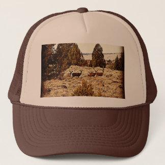 Mule Deer Does Trucker Hat