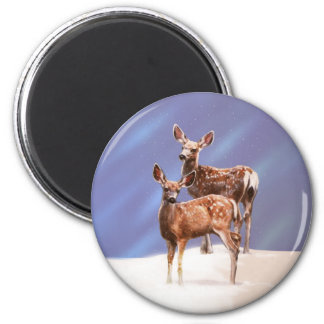 Mule Deer Fawns Magnet