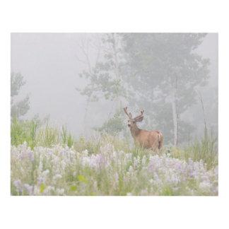 Mule Deer in Foggy Meadow Panel Wall Art