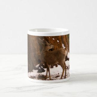 Mule Deer Mug