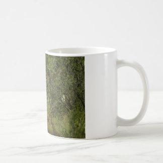 Mule Deer Raspberry Coffee Mug