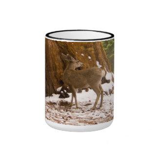 Mule Deer Ringer Mug