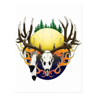 Mule Deer skull Postcard