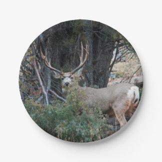 Mule deer spur buck paper plate