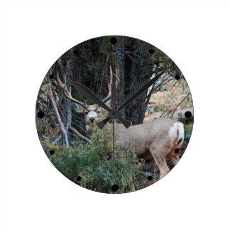 Mule deer spur buck round clock