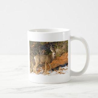Mule Deer Staring Coffee Mug