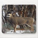 Mule deer ,wellsville mousepads