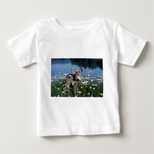 Mule Deer-young fawn in field of wite daisies by r Tshirt