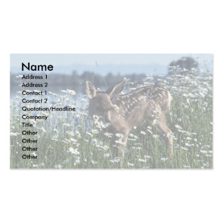 Mule Deer-young fawn in green field of white daisi Business Cards