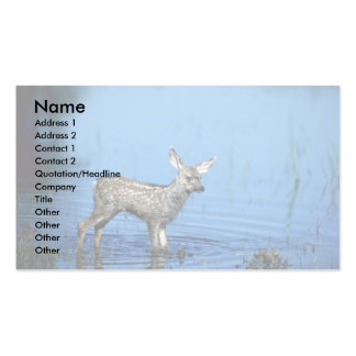 Mule Deer-young fawn in summer marsh Business Card