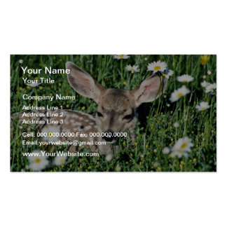 Mule Deer-young fawn lying in green field of white Business Card Template