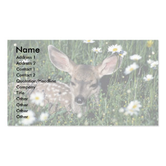 Mule Deer-young fawn lying in green field of white Business Card Templates