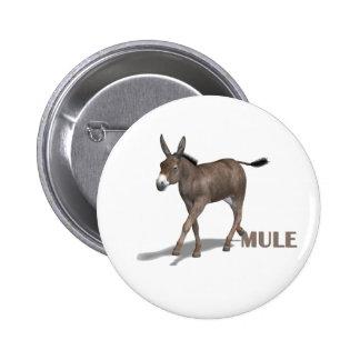 mule pinback button