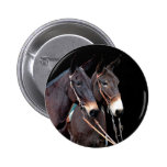 Mule Twosome Pinback Buttons