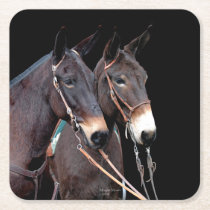 Mule Twosome Square Paper Coaster