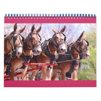 mules and donkeys calendar