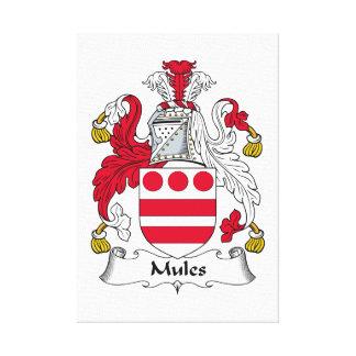 Mules Family Crest Canvas Print
