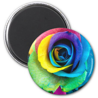 Mulit-Colored Rose by SnapDaddy, can Personalize! 2 Inch Round Magnet