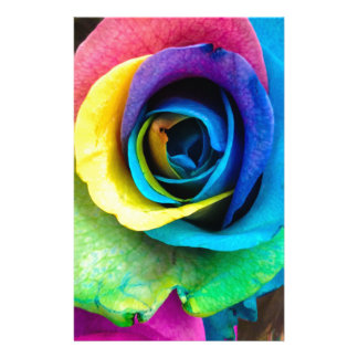 Mulit-Colored Rose by SnapDaddy, can Personalize! Stationery
