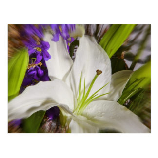 Mulit flower Arrangement Exploditi Postcard