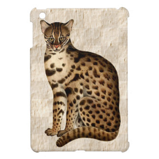 Multa exótica del gato felina