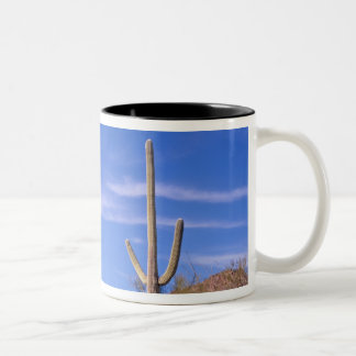 Multi armed Giant Saguaro cactus, Saguaro Mugs