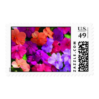 Multi Color Flowers Postage